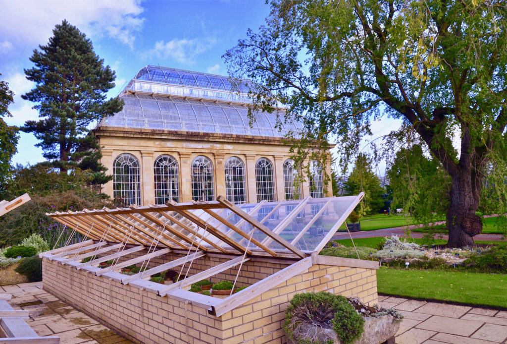 Row of cold frames, lids open, with Victorian glasshouse behind