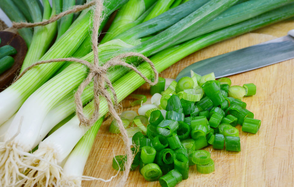 Spring onions are rich in vitamins,minerals and natural compound. Green onions or Spring onions on wooden board cutting.;