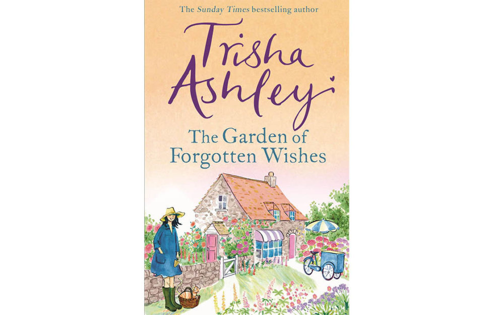 Cover of the book with a cottage and garden, a girl in Wellington boots and an ice cream cart