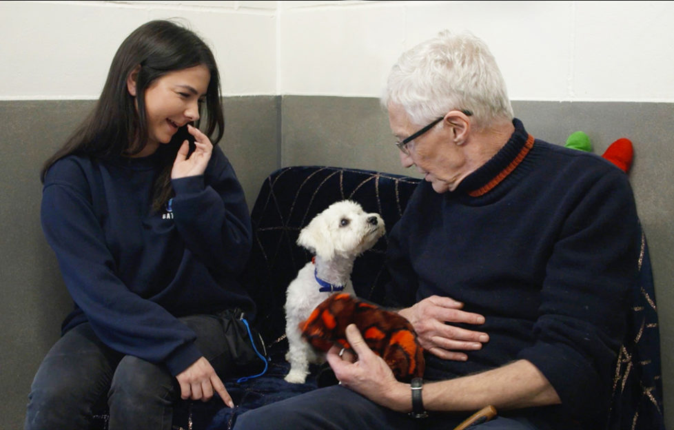 Paul O'Grady's For the Love of Dogs: Back in Business