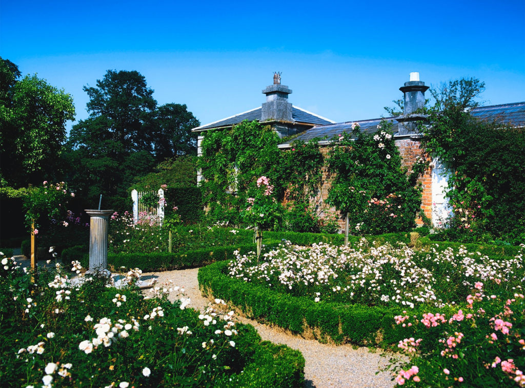 Old fashioned roses in box-edged beds and sundial in garden beside mellow brick building