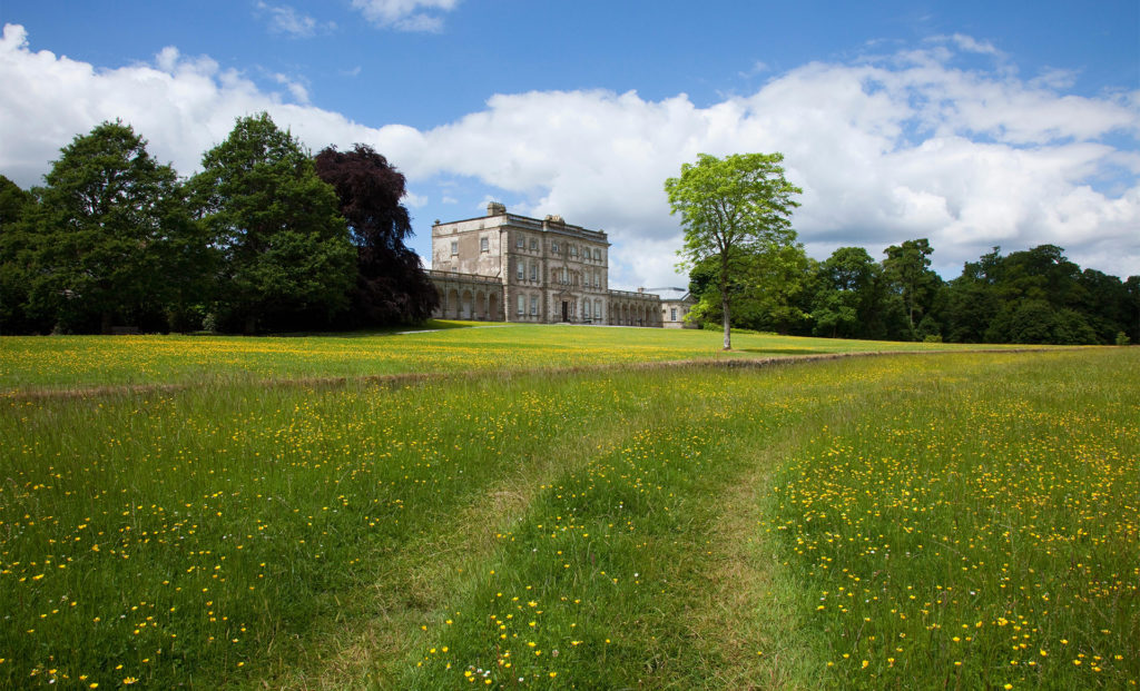 Path through wildflower meadow, stately home in middle distance