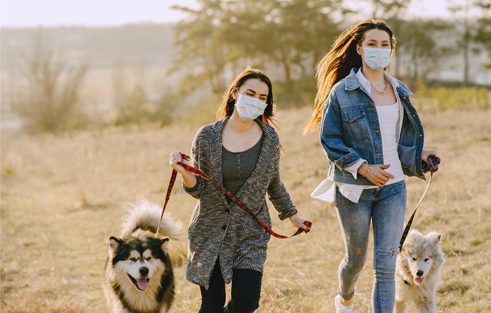 2 young women wearing face masks walking husky type dogs across a field