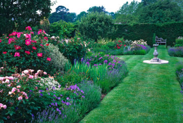Mounds of plants in border edged with lavender, grassy path leading to sundial and bench