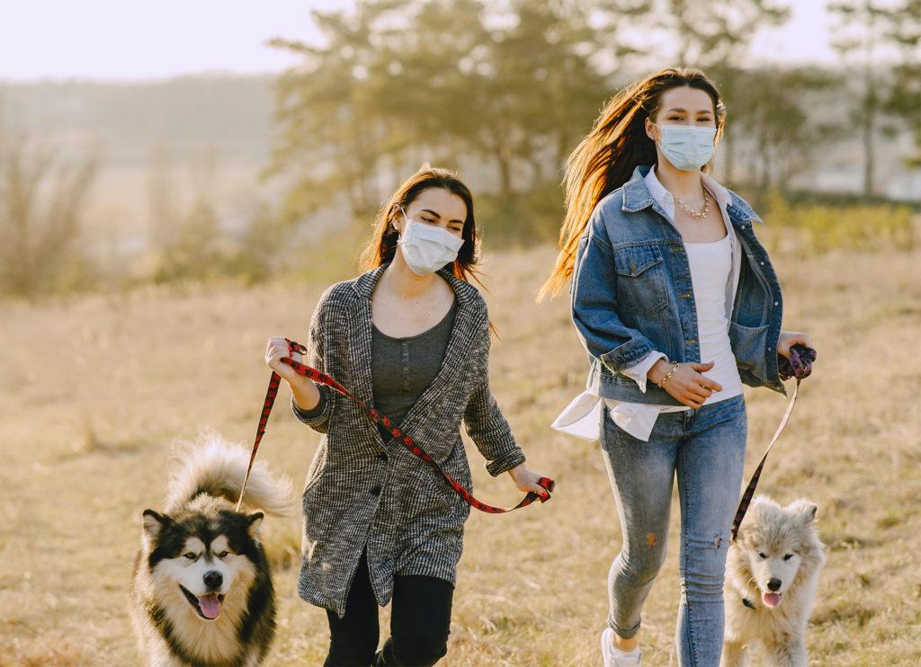 2 young women wearing masks walking husky type dogs across a field