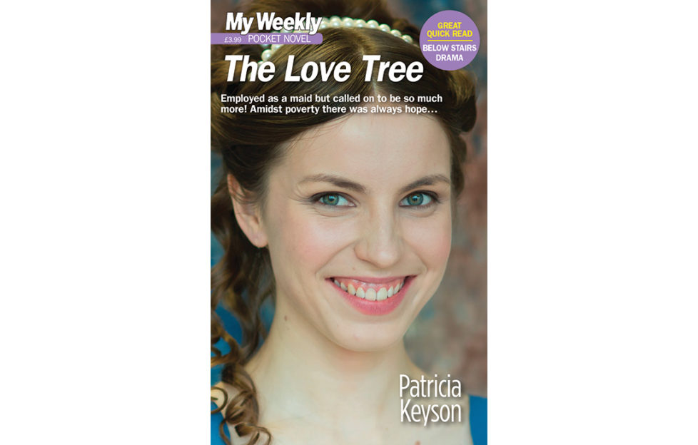 Pocket novel cover 2012