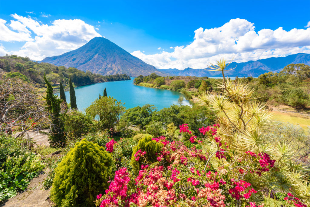 Turquoise lake, bushes with red flowers, cone-shaped mountain beyond