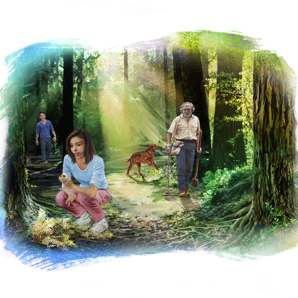Photo collage, 3 people and a dog walking through sunlit woods, young woman is crouching down to pick a flower