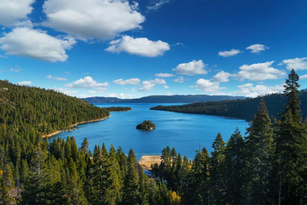 Pine forest in foreground, blue lake with island behind, gentle hills