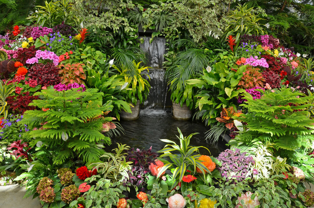 Beds of tropical flowers and ferns around pond and waterfall