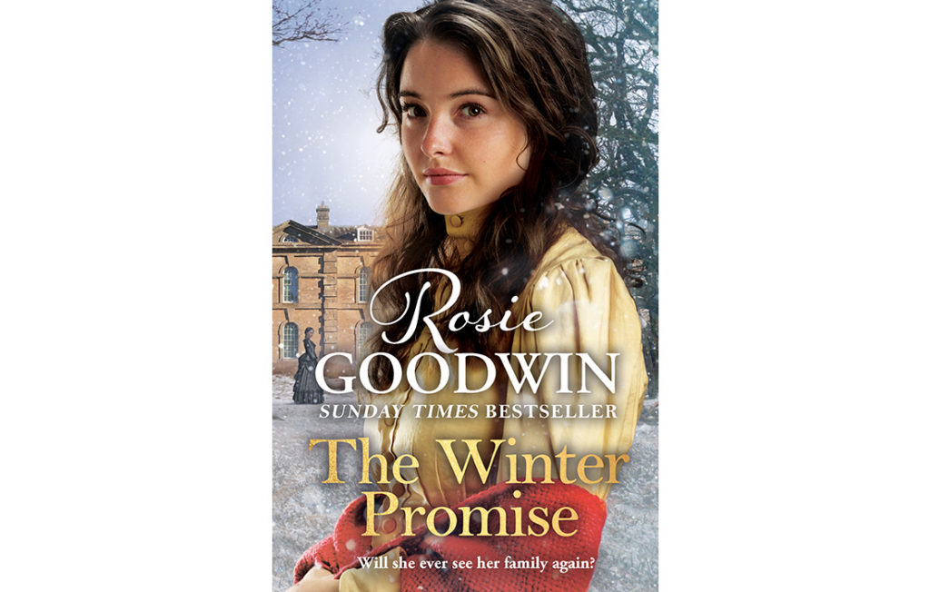 The Winter Promise cover