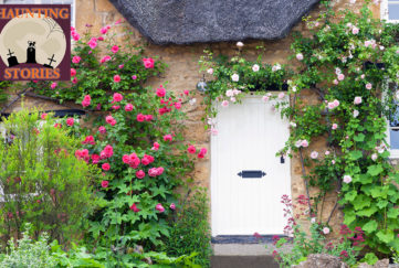 Cottage with white wooden door and climbing roses