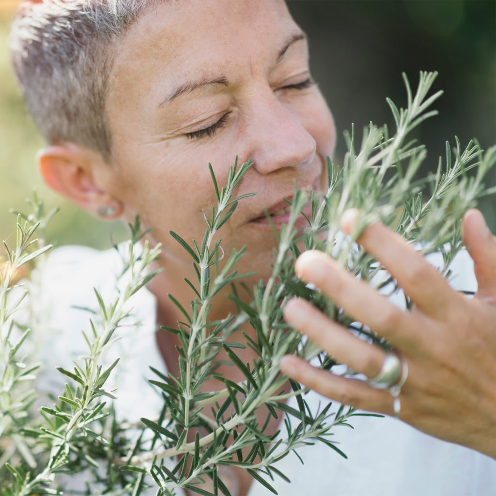 Natural beauty middle age woman gently touching rosemary plants,