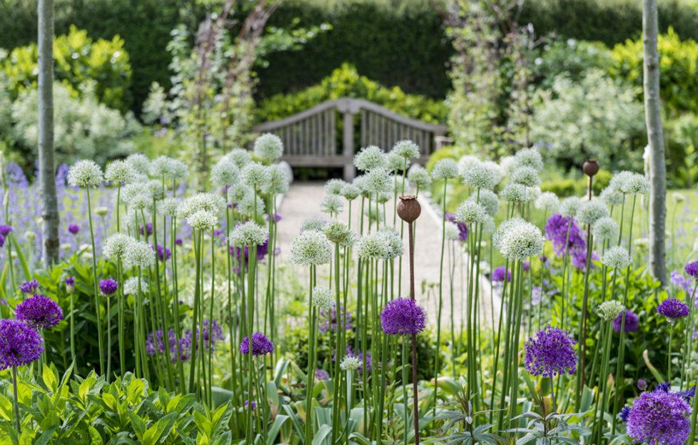 Ordnance House Gardens