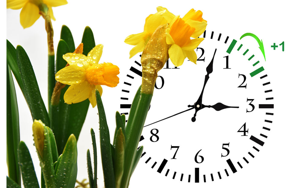 Clock going forward with daffodils