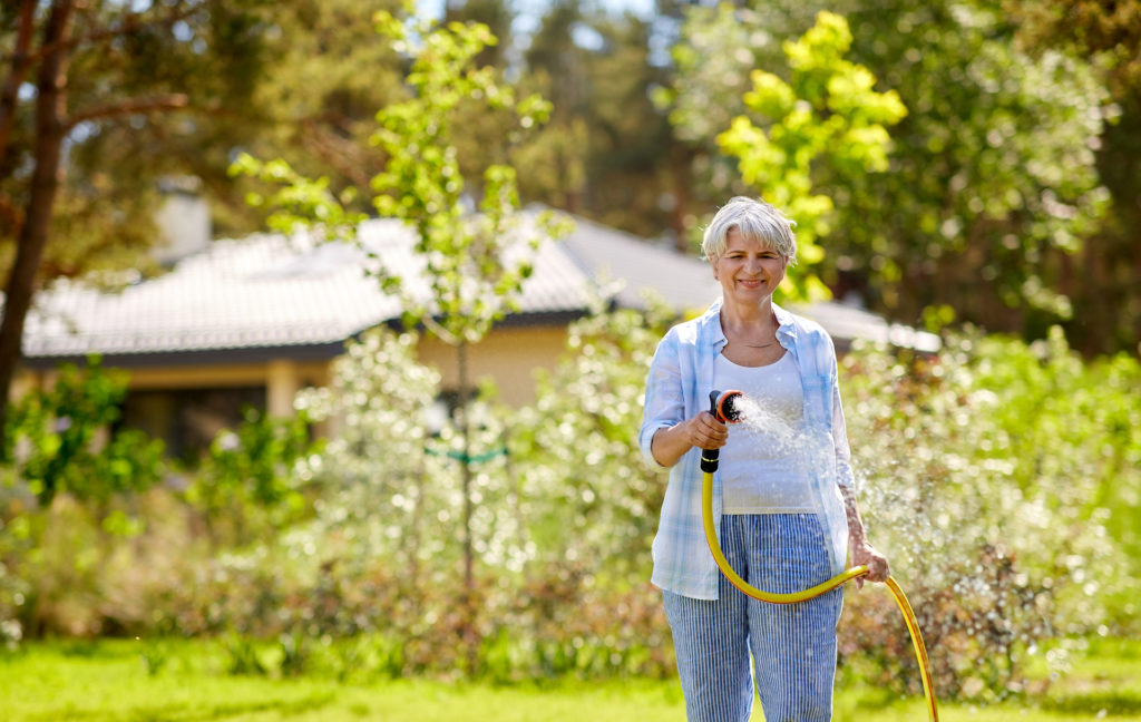 gardening and people concept - happy senior woman watering lawn by garden hose at summer.