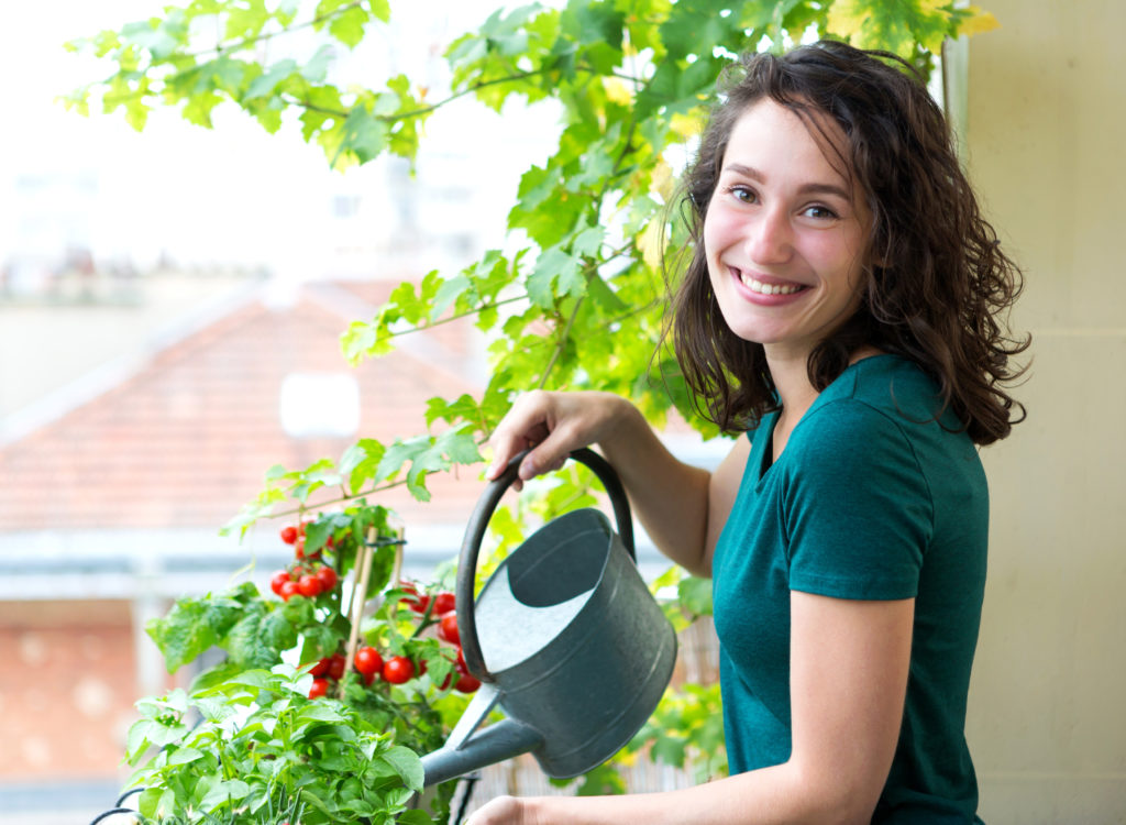 View of a Young woman watering tomatoes on her city balcony garden - Nature and ecology theme;