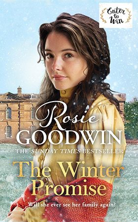 The Winter Promise book cover