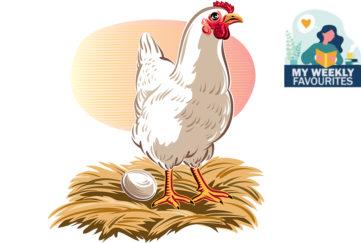 A hen on nest with egg Illustration: Shutterstock