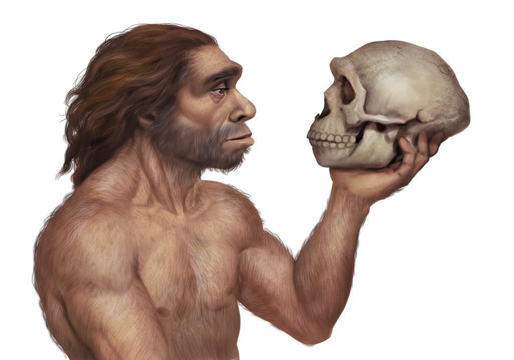 realistic painting of Neanderthal man looking at Neanderthal skull