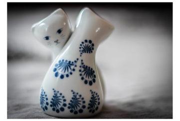 Salt and pepper cats Pic: Shutterstock