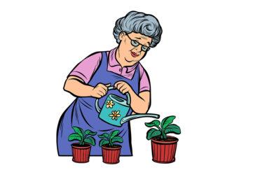 mature lady watering plants Illustration: Shutterstock