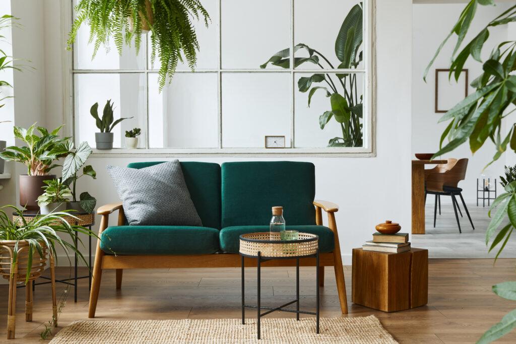 Japandi interior with houseplants Pic: Shutterstock