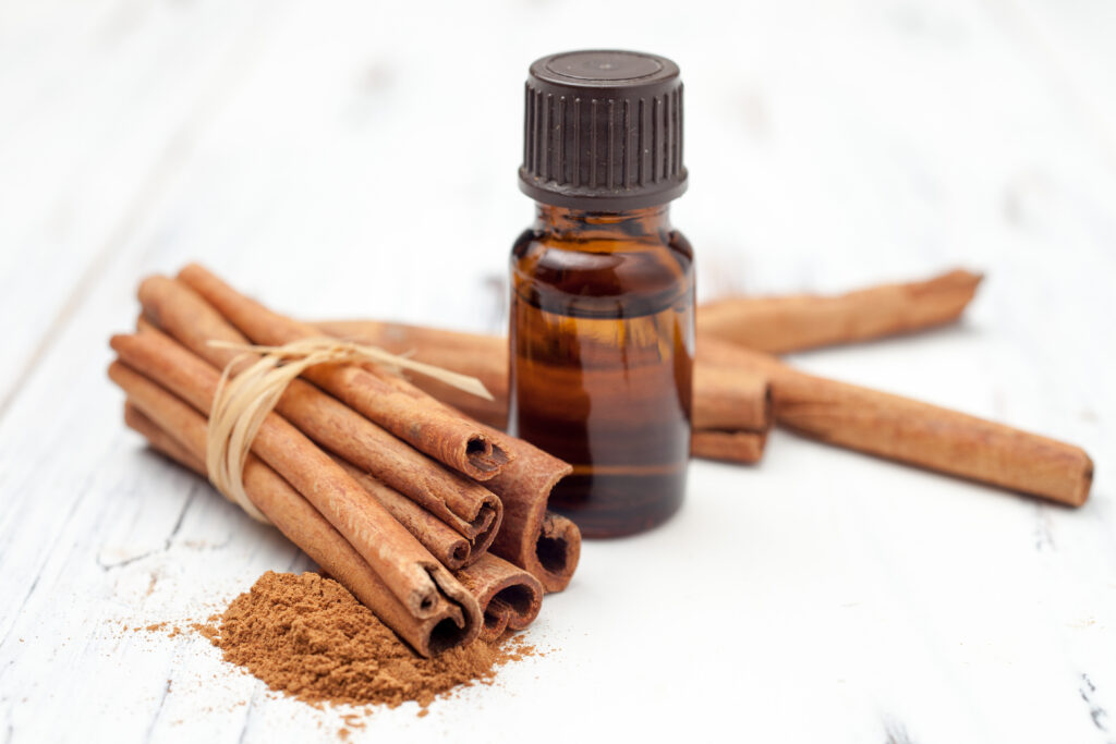 ground cinnamon, essential oil and cinnamon sticks cinnamon on a white background;