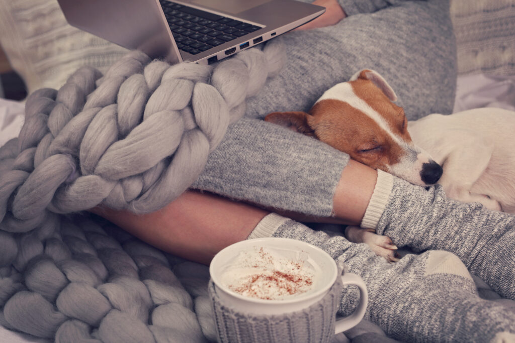 Cozy home, warm blanket, hot drink, movie night. Dog sleeping on female feet. Relax, carefree, comfort lifestyle