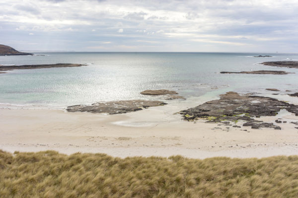 Sandy beach with grass in the foreground. One of the best beaches in Scotland