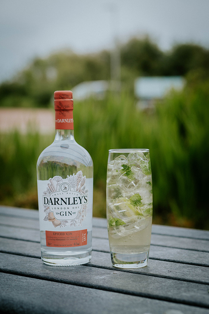 Darneley's Gin Cocktails - spiced ginger mojito