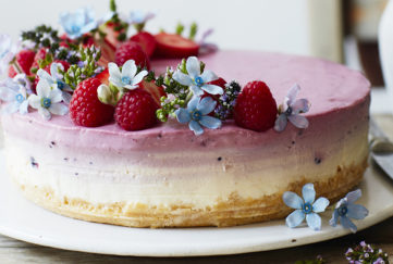 Colour Changing Gin Cheesecake