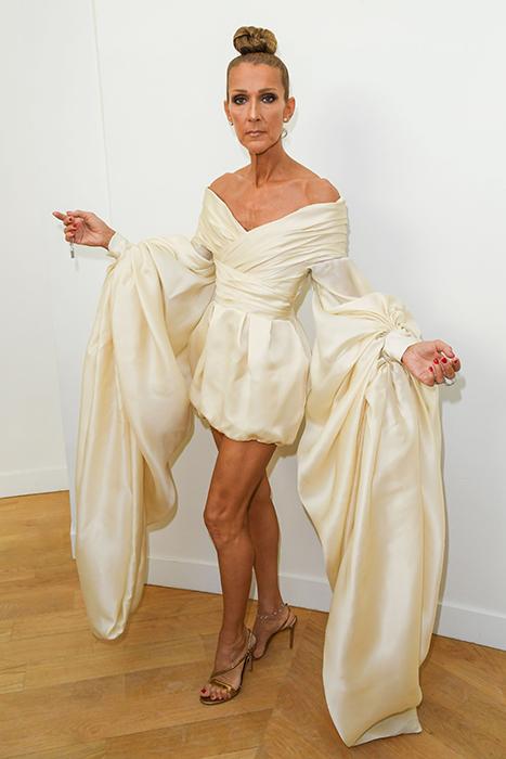 Celine Dion Sleeves