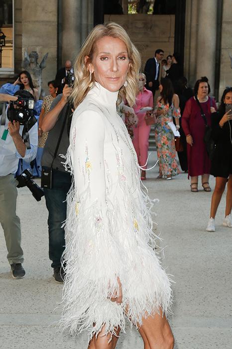 Celine Dion feather dress