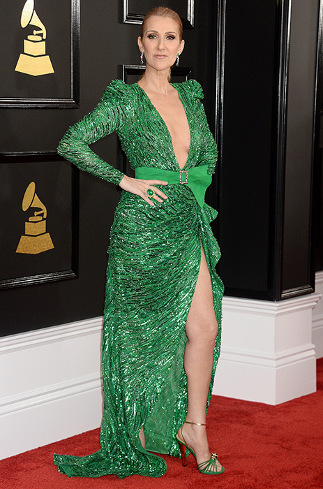 Celine Dion Green Sequin Dress