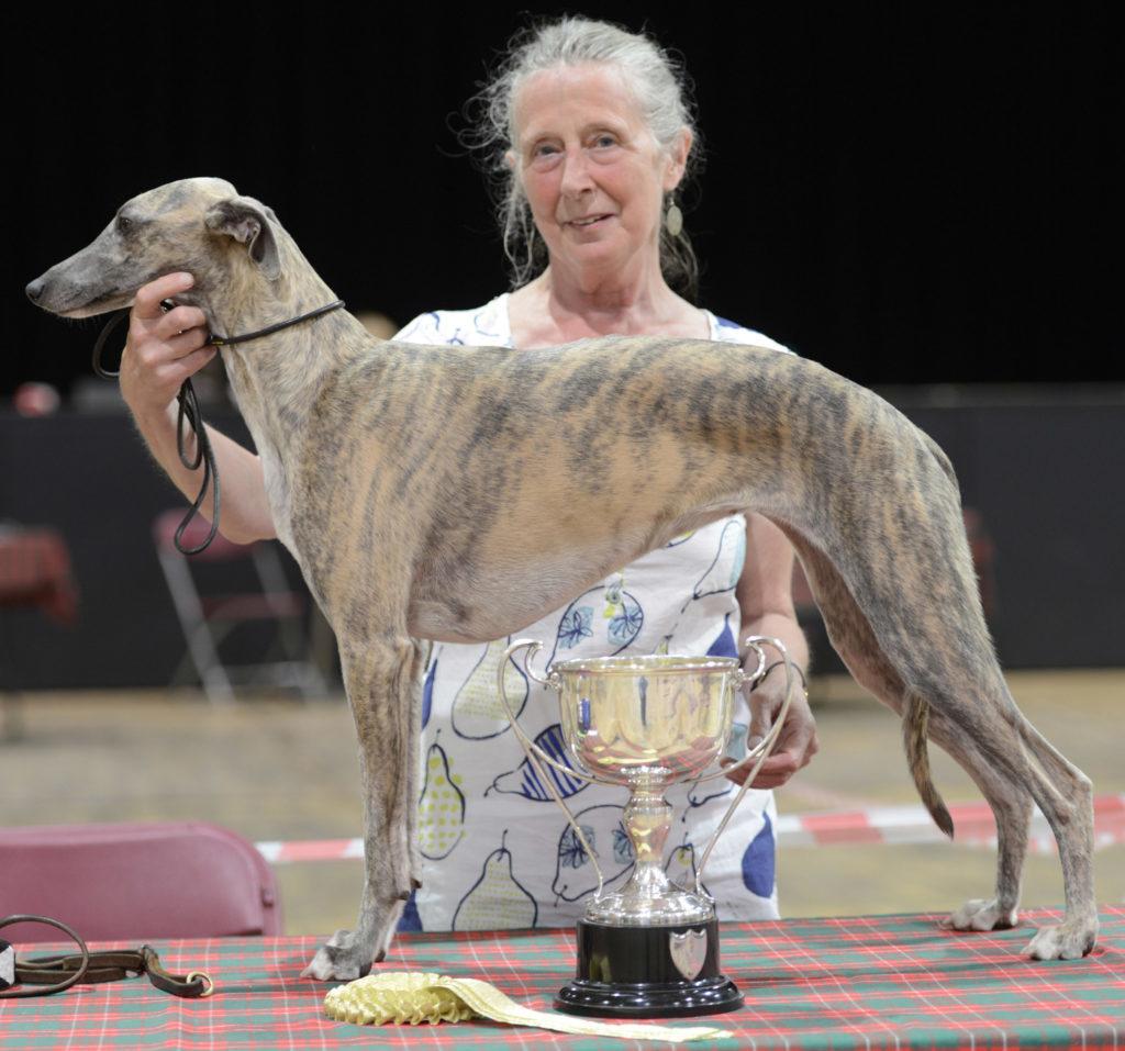 DOG SHOW  Best pedigree, Linnet with owner Catherine Putman. Picture Iain Ferguson, alba.photos