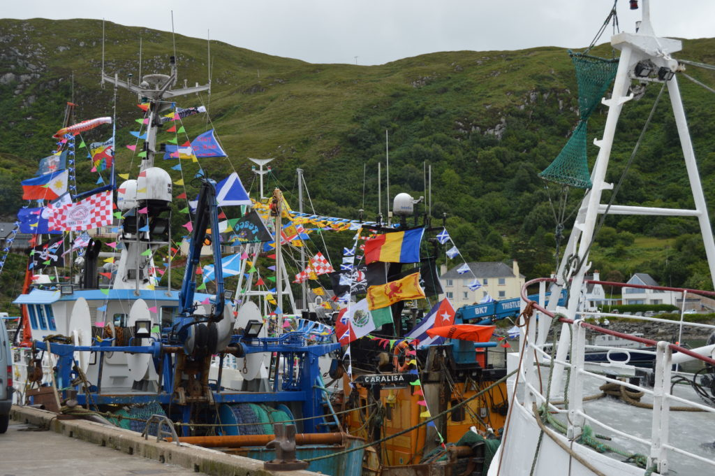 ​The Mallaig fleet and visiting boats were dressed over all for the day. Photograph: Joanne Simms