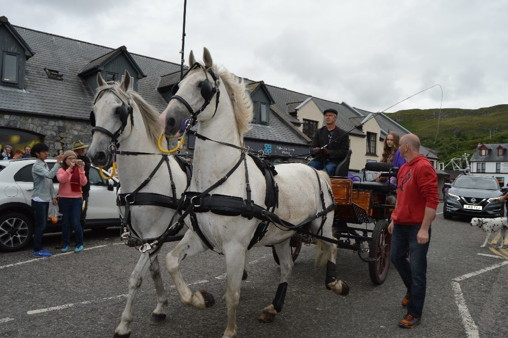 ​There was a ride around the village for the gala queen and princess in a horse drawn trap.