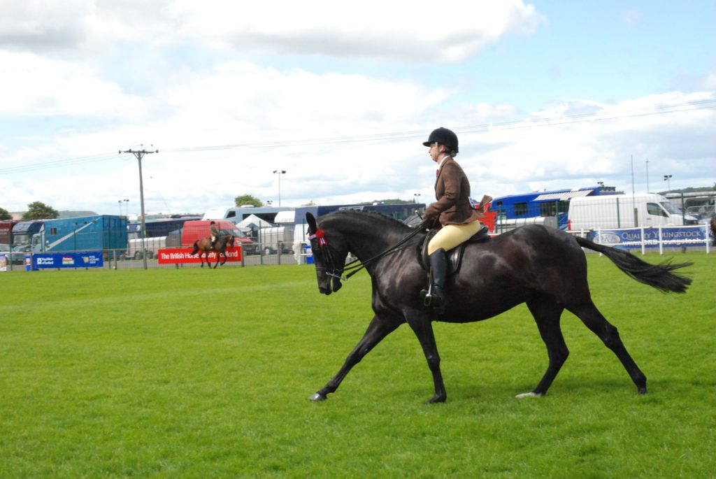 Bute rider Laura McMillan performing in the ridden horse classes with seven-year-old mare Westmore Eclipse. 06_a26RHS18_McMillanHorseriding