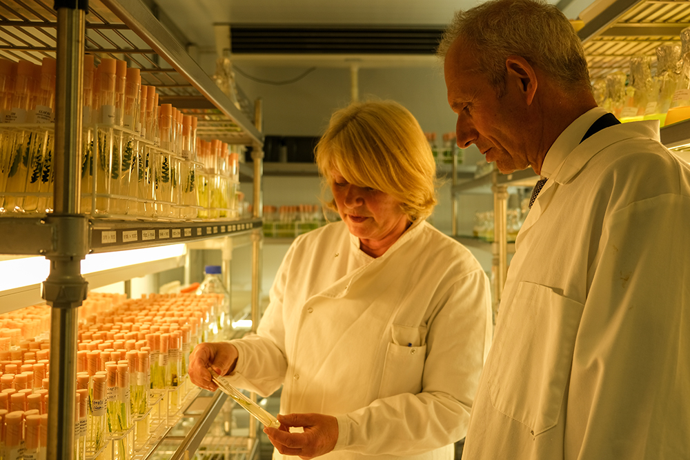 Cabinet minister David Lidington with Christine Campbell, technical resources manager, in the Culture Collection of Algae and Protozoa at SAMS.