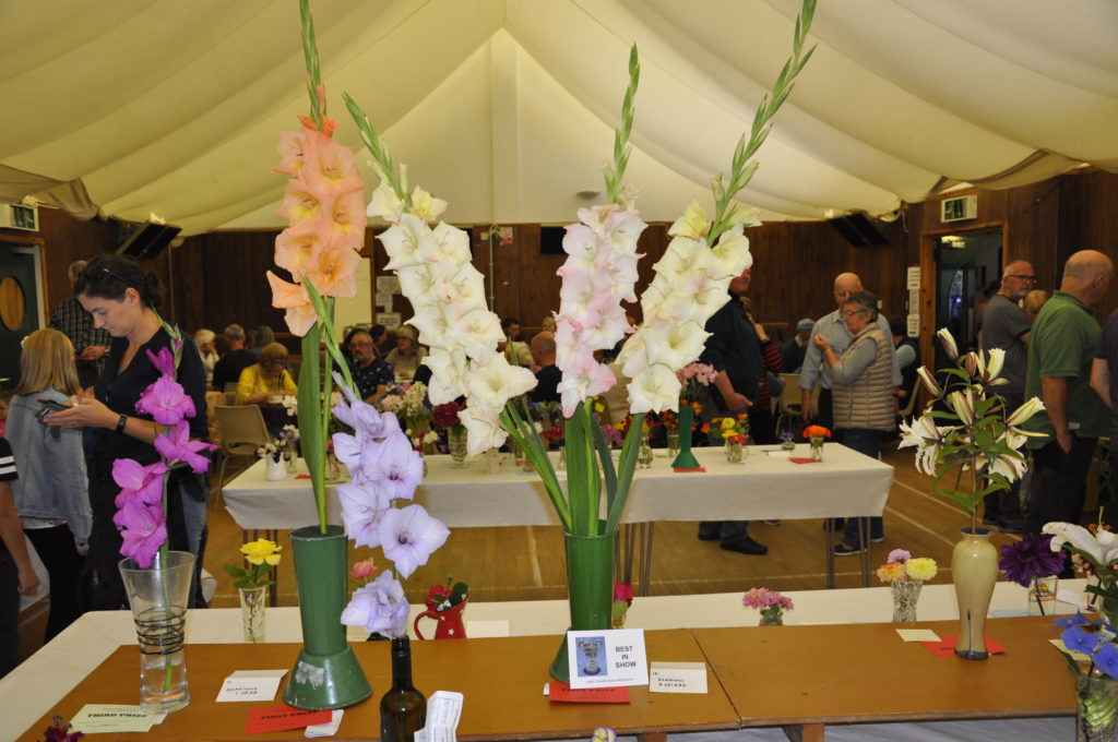 The best in show was an impressive display of flowers. 15_T35_Flowershow06