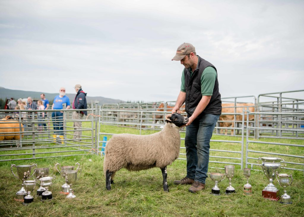 The home-bred ewe from John Nudds shows off the form that saw it named overall champion  NO F35 LAS 2019 - ewe overall champion