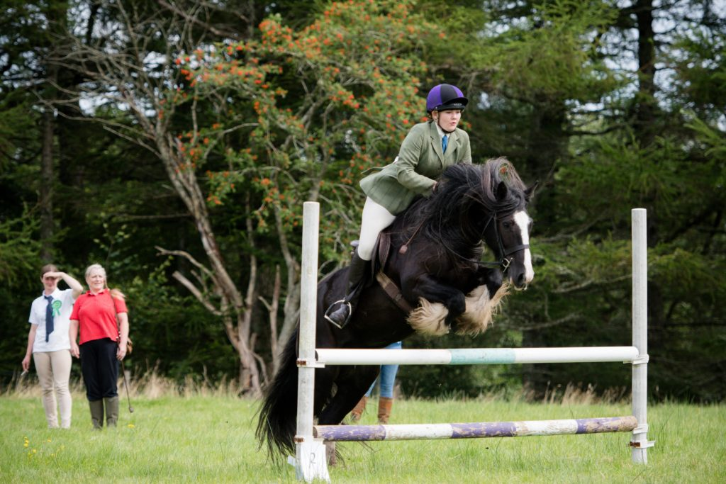 More action from the show jumping.  NO F35 LAS 2019 - show jumping