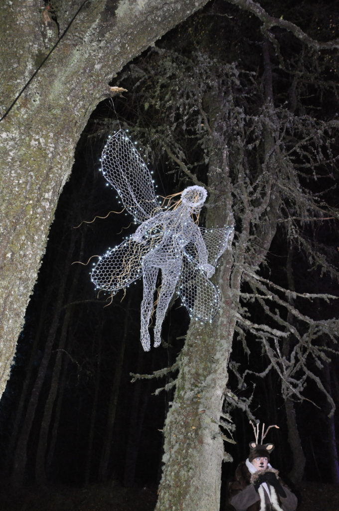Fairies were watching from everywhere in the Winter Woods.