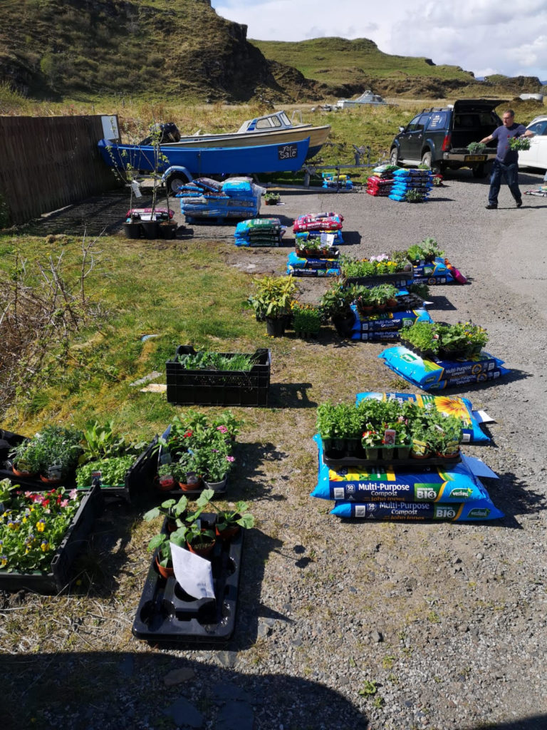 Orders ready for pick-up to make Luing's gardens grow.