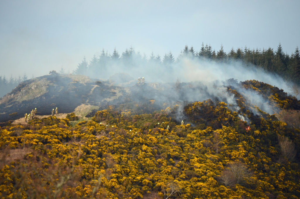 It took firefighters 15 hours to bring the blaze under control. Photograph: Maurice Wilkins