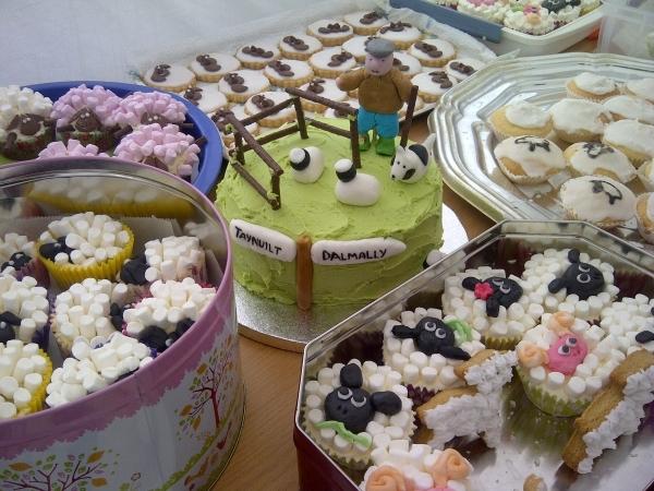 Baarilliant start for first Dalmally Sheep Festival
