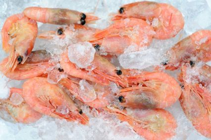 Fishing quotas hiked to help shellfish sector