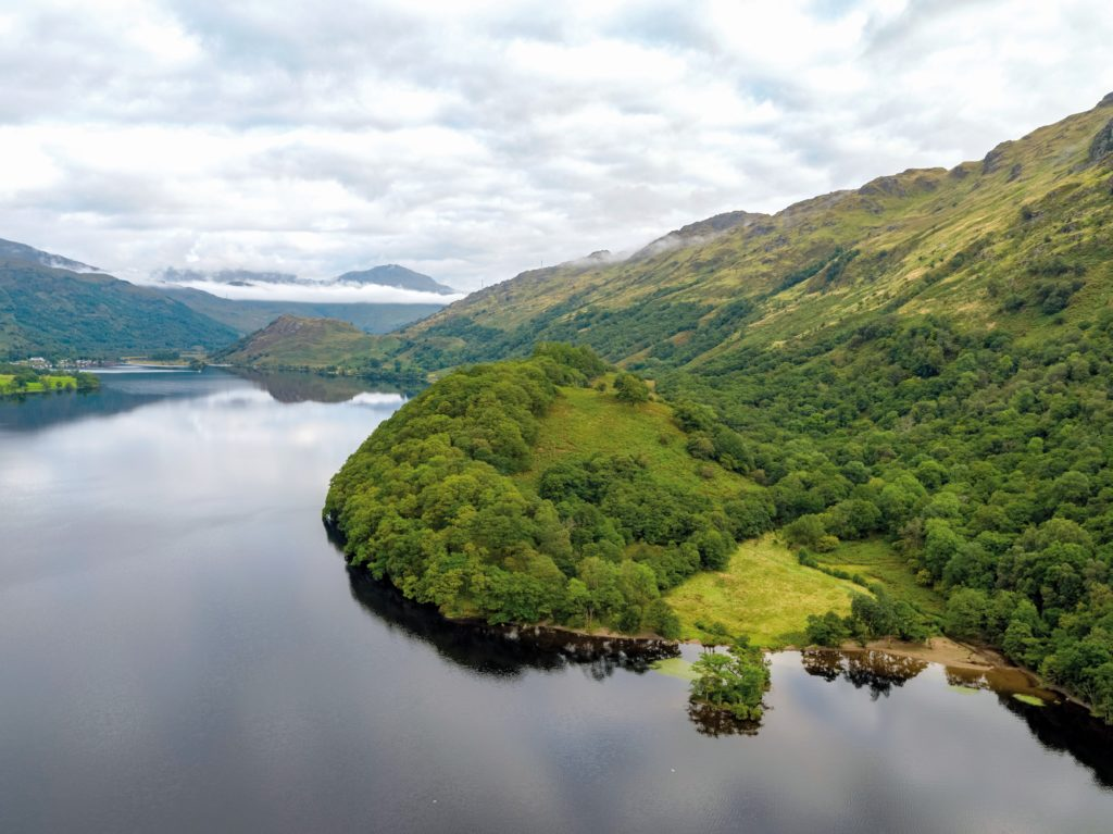 Views sought on woodland plan for national park