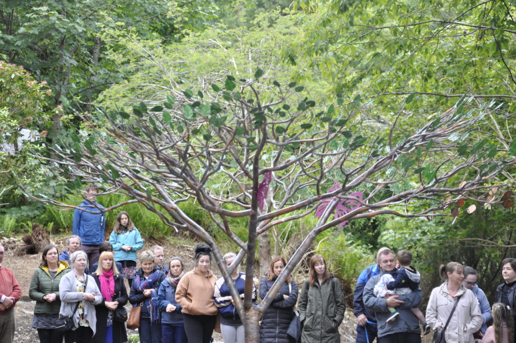 Memorial tree installed at Dunollie for families who have lost a baby